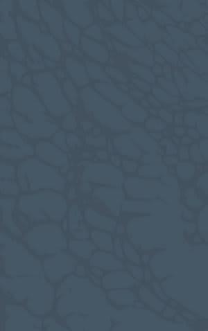 Rizzy Arden Loft-Sandhurst Sh219b Blue Area Rug