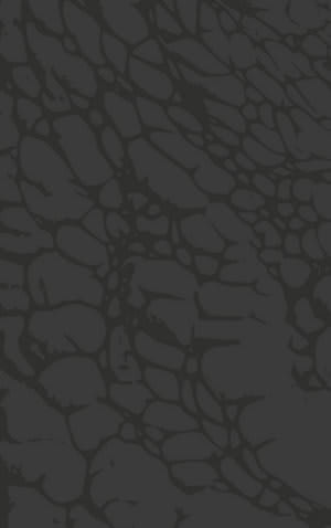 Rizzy Arden Loft-Sandhurst Sh221b Dark Grey Area Rug