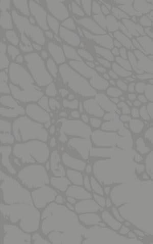 Rizzy Arden Loft-Sandhurst Sh222b Grey Area Rug