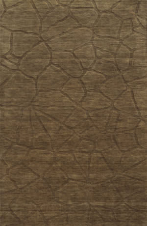 Rizzy Technique Tc8269 Brown Area Rug