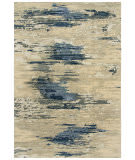 Rizzy Finesse Fin104 Beige - Gray Area Rug