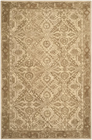 Safavieh Anatolia An583c Ivory / Grey Area Rug