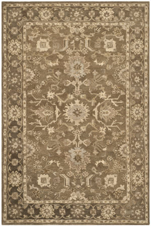 Safavieh Anatolia An585g Grey / Dark Grey Area Rug