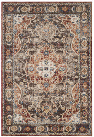 Safavieh Bijar Bij648d Brown - Rust Area Rug