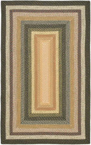 Safavieh Braided BRD308A Blue / Multi Area Rug