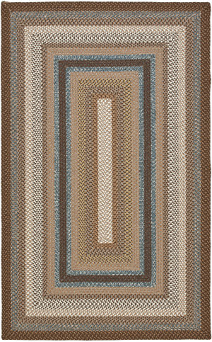 Safavieh Braided BRD313A Brown / Multi Area Rug