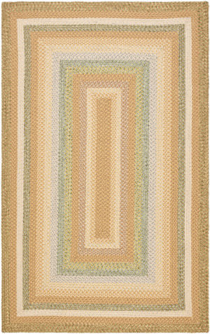 Safavieh Braided BRD314A Tan / Multi Area Rug