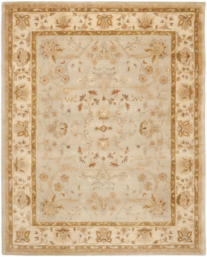 Safavieh Bergama BRG135C Light Blue / Ivory Area Rug