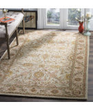 Safavieh Antiquities AT17A Ivory - Light Green Area Rug