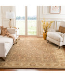 Safavieh Antiquities AT311A Brown - Gold Area Rug