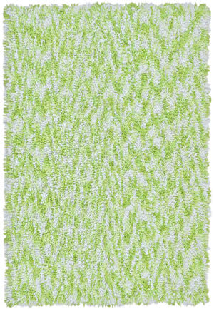 St. Croix Shagadelic Chs32 Green Area Rug