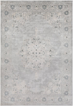 Surya Asia Minor Asm-2309  Area Rug
