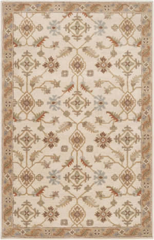 Custom Surya Caesar Cae-1084 Brown Area Rug