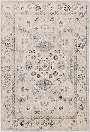 Surya City Cit-2365  Area Rug