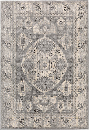 Surya City Cit-2379  Area Rug