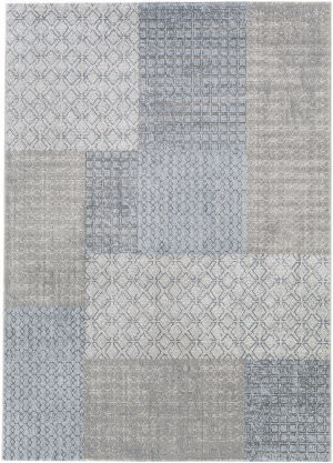 Surya Contempo Cpo-3728 Gray/Denim Area Rug