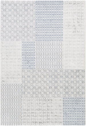 Surya Contempo Cpo-3729 Denim Area Rug