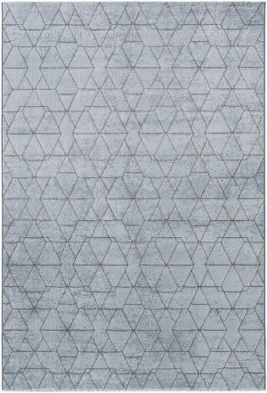 Surya Contempo Cpo-3732 Denim/Gray Area Rug