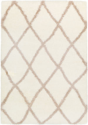 Surya Cloudy Shag Cys-3402  Area Rug