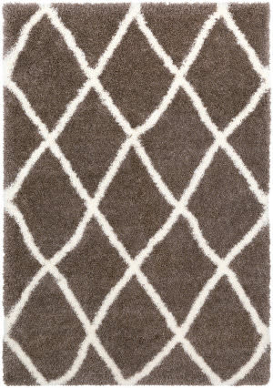 Surya Cloudy Shag Cys-3406  Area Rug