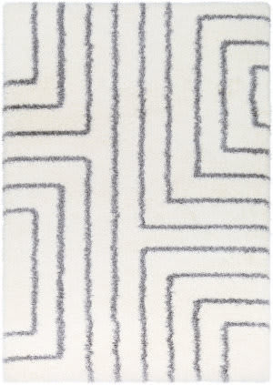 Surya Cloudy Shag Cys-3415  Area Rug
