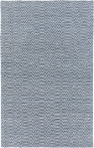 Surya Drift Wood Drf-3003 Slate Area Rug