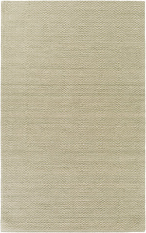Surya Drift Wood Drf-3004 Olive Area Rug