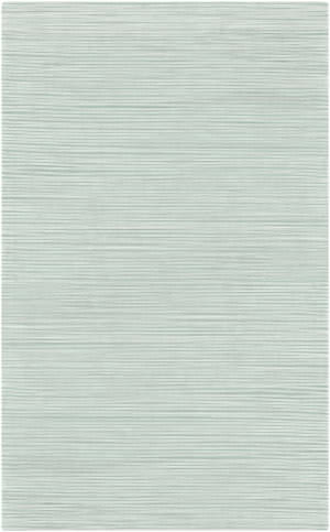 Surya Graphite GPH-55 Sea Foam Area Rug