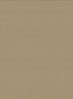 Surya Mugal IN-8607 Taupe Area Rug