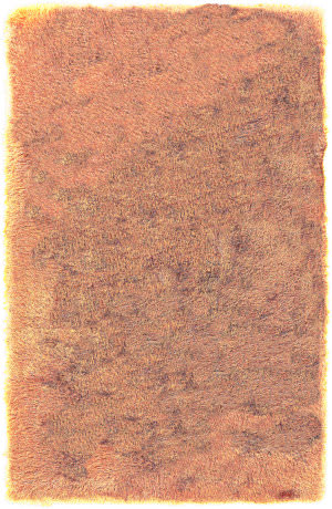 Surya Monster MNS-1006 Orange Area Rug