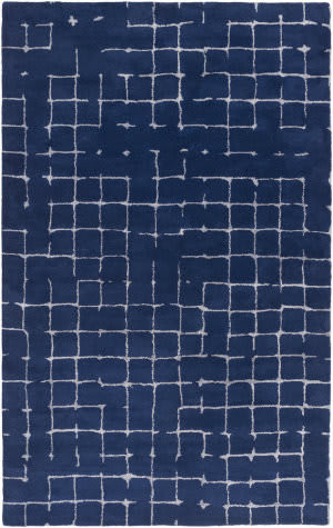 Surya Pursuit Put-6004 Navy Area Rug