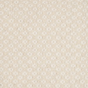 Surya Ravena Rvn-3005 Winter White Area Rug