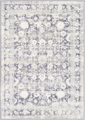 Surya Silk Road Skr-2312  Area Rug