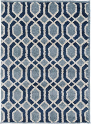 Surya Swift Swt-4004  Area Rug