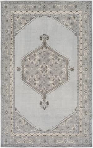 Surya Zahra Zha-4028 Slate Area Rug