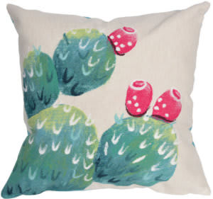 Trans-Ocean Visions Iii Pillow Cactus Pear 4314/12 Cream Area Rug