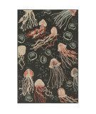 Trans-Ocean Riviera Jellyfish 7659/47 Grey Area Rug