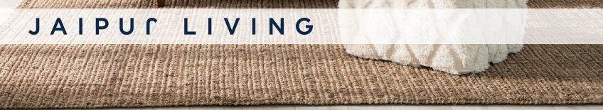 Shop Jaipur Living Rugs