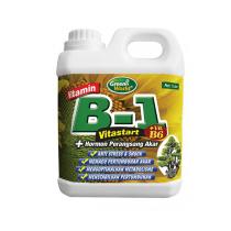 GREEN WORLD VITAMIN B1-B6 1 LTR