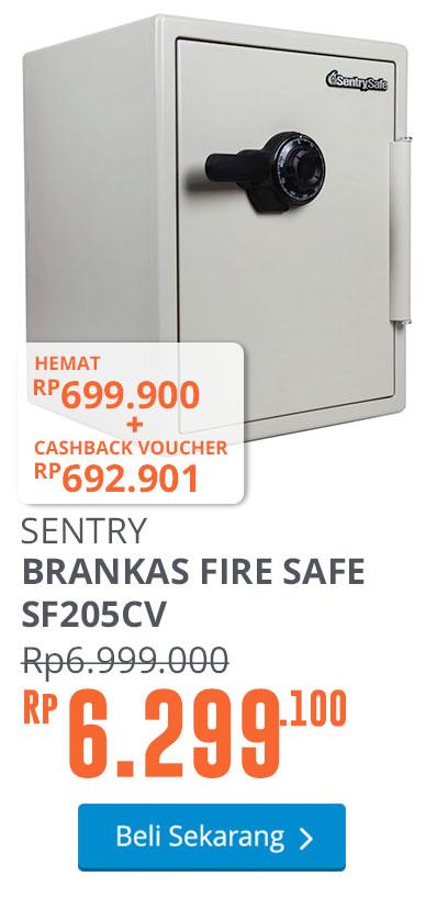 FIRE SAFE SF205CV