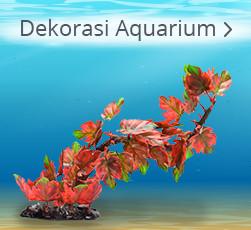 Dekorasi Aquarium