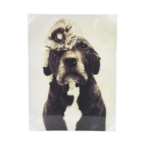 HIASAN DINDING PRINT CANVAS DOG & CAT 80X60X2.5 CM