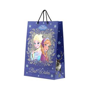Disney paper Bag Frozen Winter Hug For You Size L