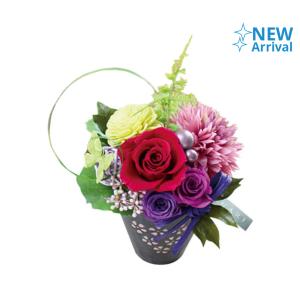 FLOWER ADVISOR PRESERVED FLOWER NAOMI