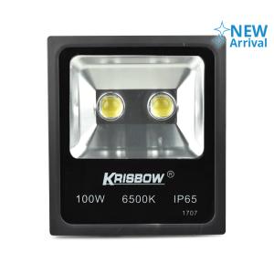 KRISBOW LAMPU SOROT LED COB 100 W 6000 K