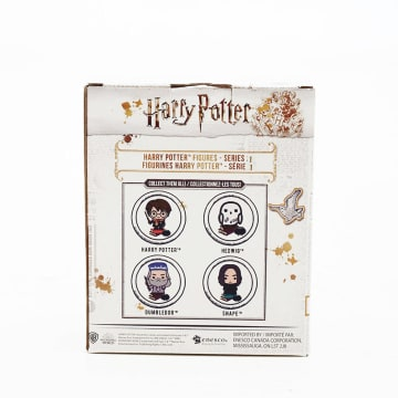 HARRY POTTER CHARMS STYLE FIG_2