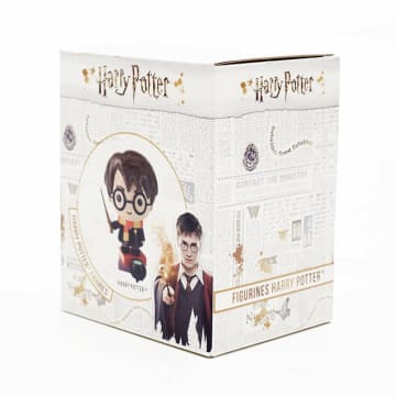 HARRY POTTER CHARMS STYLE FIG_5