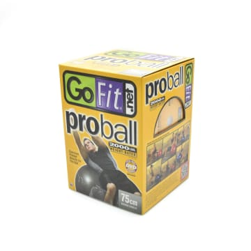 GO FIT PROBALL BOLA FITNESS 75 CM GF-75PRO - SILVER_2