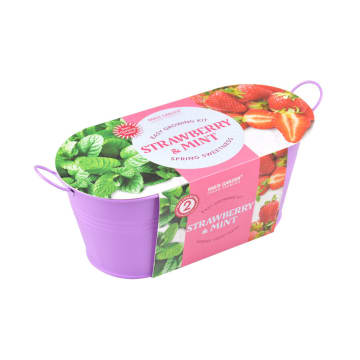 PARIS GARDEN BIBIT STRAWBERRY AND MINT_2