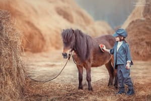 Конюх и лошади. Свои сказки